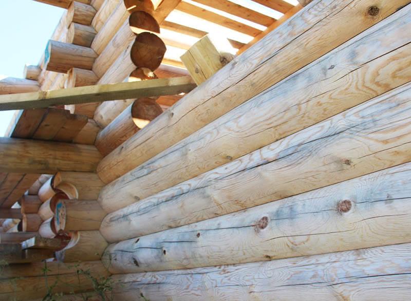 Экспертиза деревянных стен из кругляка
